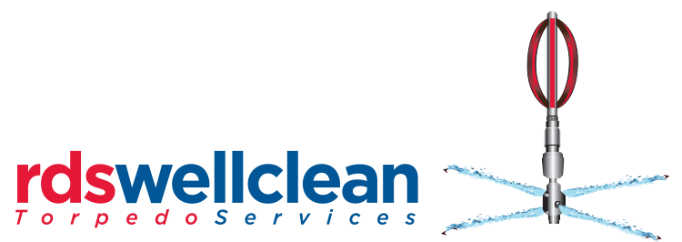 Well_Clean_logo
